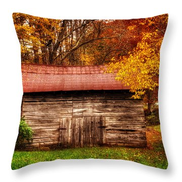 Throw Pillow featuring the photograph Barn In Fall by Greg Mimbs