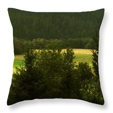 Barn In The Meadow Throw Pillow