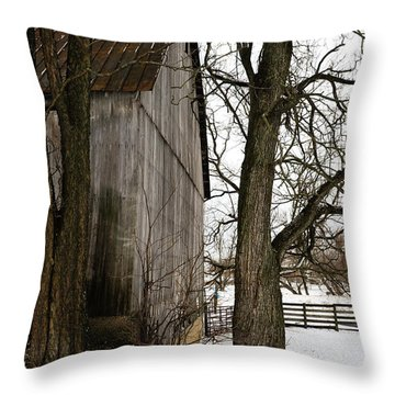 Barn In Winter Throw Pillow by Donald Fink