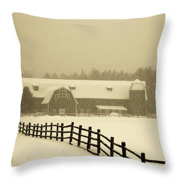 Barn Lake Placid N Y Throw Pillow