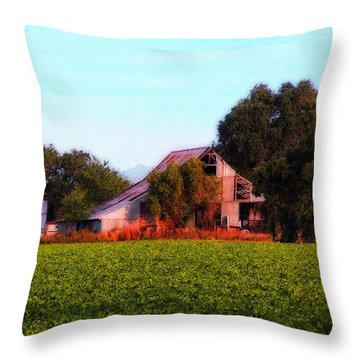 Barn On Covell Road 3 Throw Pillow by Timothy Bulone