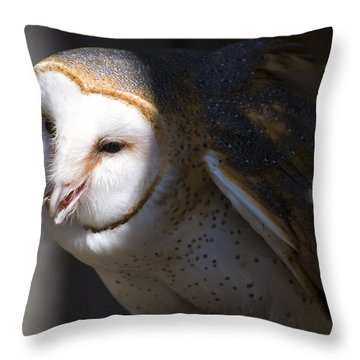 Barn Owl 1 Throw Pillow