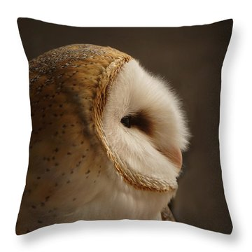 Barn Owl 3 Throw Pillow by Ernie Echols