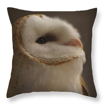 Barn Owl 4 Throw Pillow by Ernie Echols