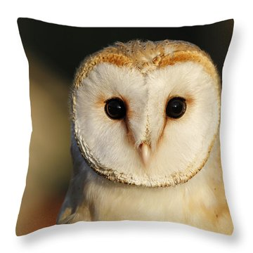 Uil Throw Pillows