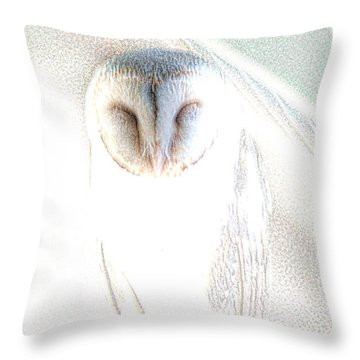 Barn Owl Throw Pillow by Holly Kempe