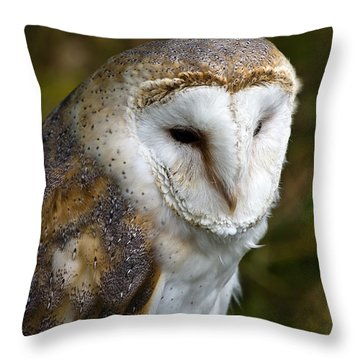 Barn Owl Throw Pillow by Scott Carruthers
