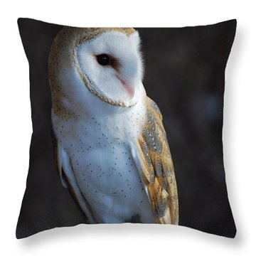 Barn Owl Throw Pillow by Sharon Elliott