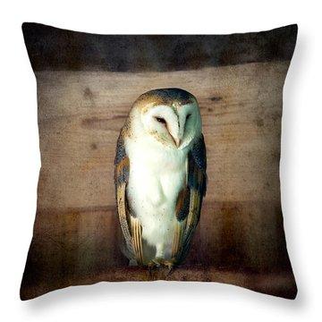 Barn Owl Vintage Throw Pillow