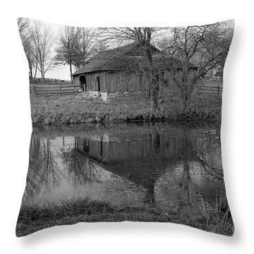 Barn Reflection Throw Pillow