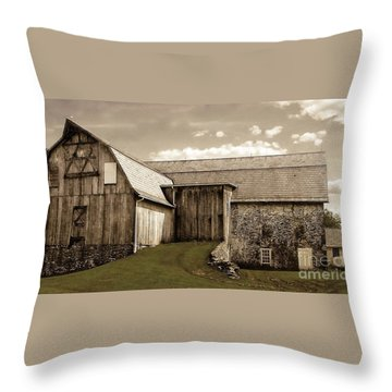 Barn Series 1 Throw Pillow