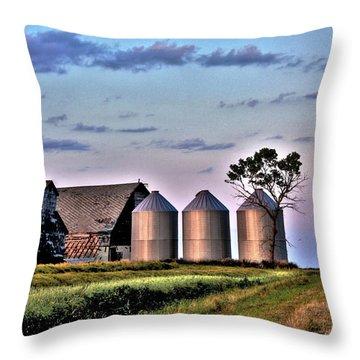 Barn Silos Throw Pillow