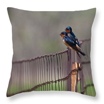 Barn Swallows On The Fence Throw Pillow