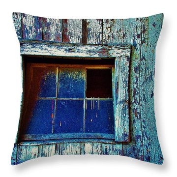 Barn Window 1 Throw Pillow