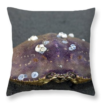 Barnacled Crab Shell Throw Pillow