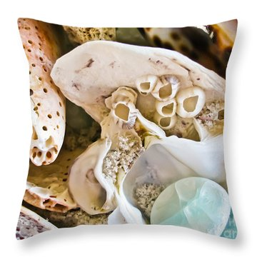 Barnacles And Shells Throw Pillow by Colleen Kammerer