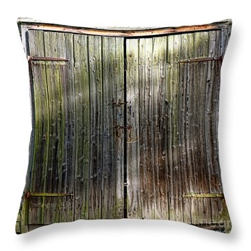 Barndoors  Throw Pillow by Olivier Le Queinec