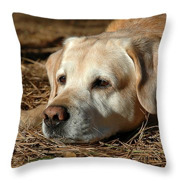 Barne Throw Pillow