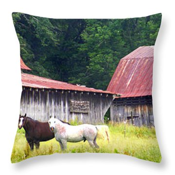 Barns And Horses Near Mills River Nc Throw Pillow