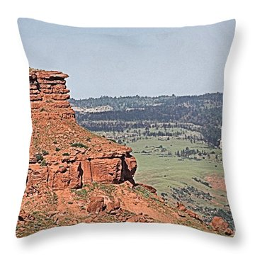 Barnum Slope Throw Pillow