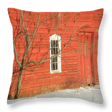 Throw Pillow featuring the photograph Barnwall In Winter by Rodney Lee Williams