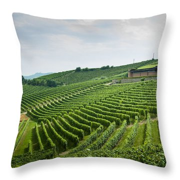 Barolo Throw Pillow