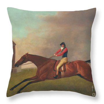 Baronet With Sam Chifney Up Throw Pillow by George Stubbs