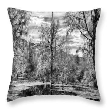 Throw Pillow featuring the photograph Barr Hammock Preserve  by Howard Salmon