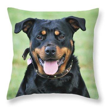Barra Throw Pillow