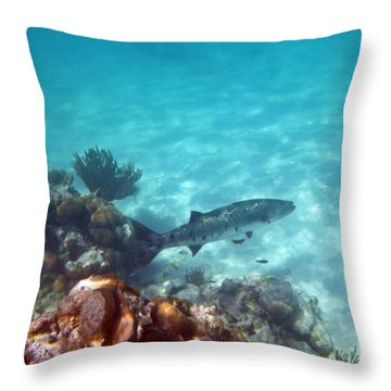 Throw Pillow featuring the photograph Barracuda by Eti Reid