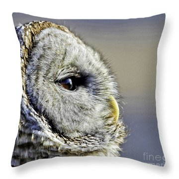 Barred None Throw Pillow