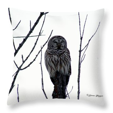 Barred Owl 4 Throw Pillow by Steven Clipperton