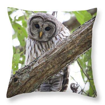 Reifel Bird Sanctuary Throw Pillows