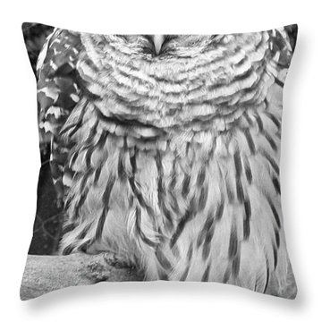 Throw Pillow featuring the photograph Barred Owl In Black And White by John Telfer