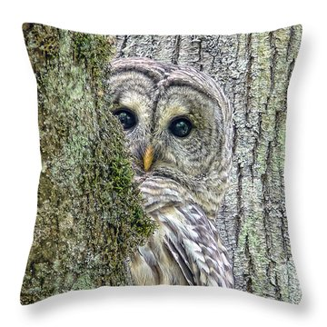 Barred Owl Peek A Boo Throw Pillow by Jennie Marie Schell