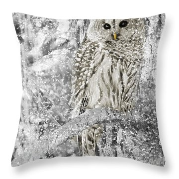 Barred Owl Snowy Day In The Forest Throw Pillow
