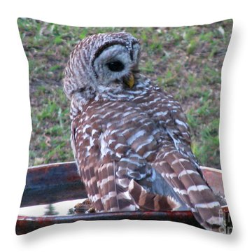 Throw Pillow featuring the photograph Barred Owl Taking A Dip by Jimmie Bartlett