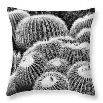 Barrel Bunch Throw Pillow by Kelley King