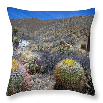 Barrel Cacti In Bloom Throw Pillow