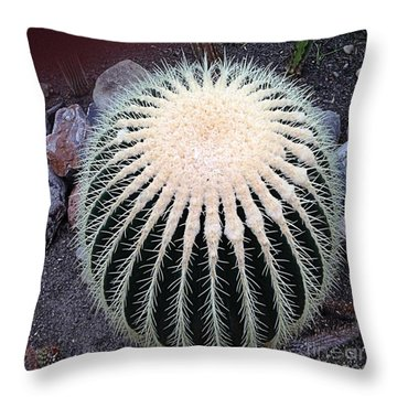 Throw Pillow featuring the photograph Barrel Cactus by Luther Fine Art