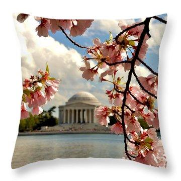 Basin Blossoms Throw Pillow
