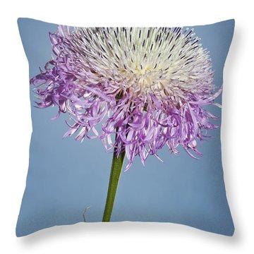Basket-flower Blocking The Sun Throw Pillow
