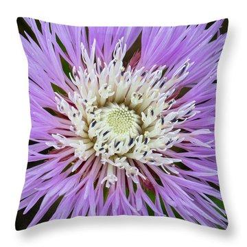 Basket-flower Opening Throw Pillow