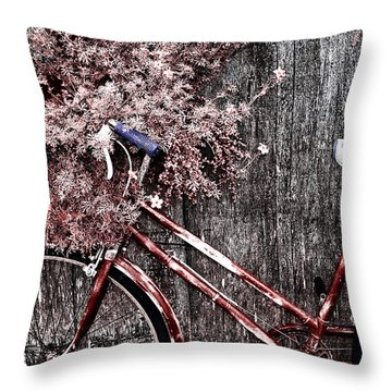 Basket Full Throw Pillow by Mark Kiver