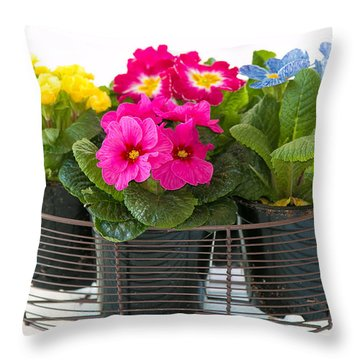 Basket Of Primroses Throw Pillow