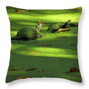 Basking Throw Pillow