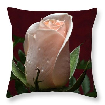 Throw Pillow featuring the photograph Basking by Doug Norkum