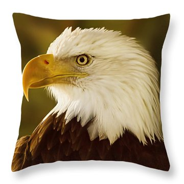 Throw Pillow featuring the digital art Basking In The Evening Glow  by Brian Cross