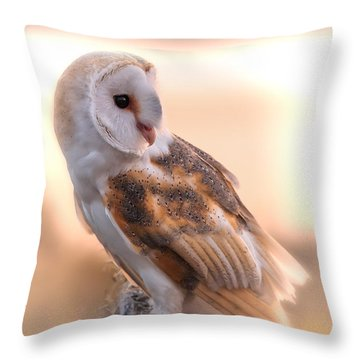Basking In The Morning Sun Throw Pillow