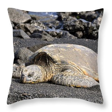 Throw Pillow featuring the photograph Basking In The Sun by David Lawson